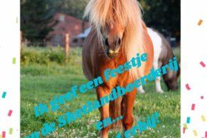 Ponyfeestje bij Shetlandboerderij